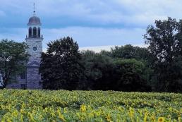 Church in a Field of Sunflowers Stone Arabia NY